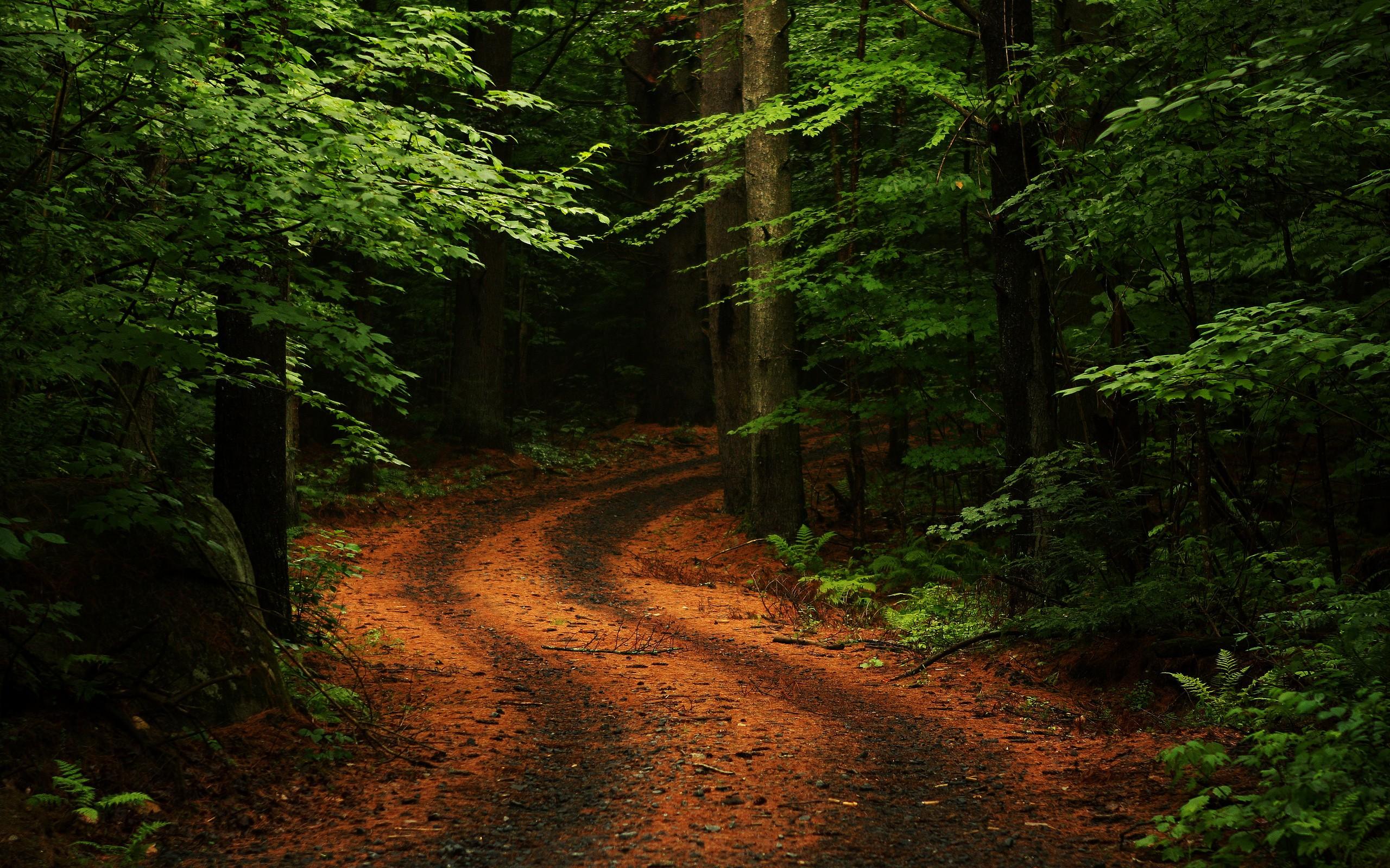 Nature Desktop Wallpaper Images Slideshow