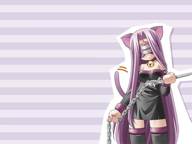 Fate Stay Night Rider Wallpaper 13 Widescreen Wallpaper   Animewpcom 790x593