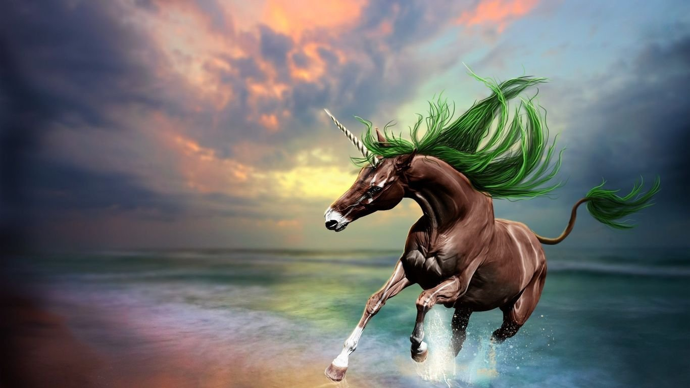 Unicorn fantasy horse hd wallpaper   Download HD WallpapersHappy 1366x768