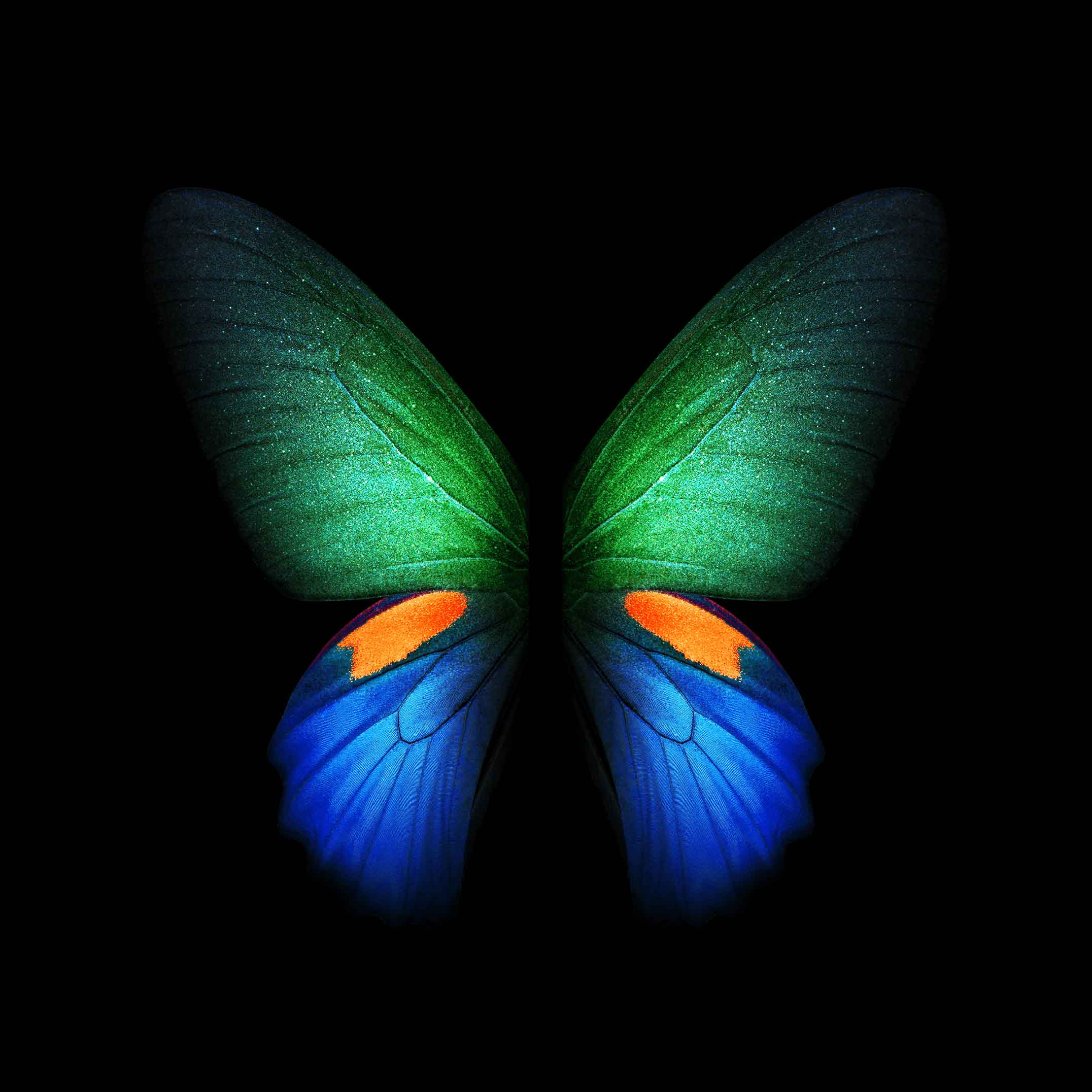 Download Galaxy Fold wallpapers and LIVE wallpapers 21522152 2152x2152
