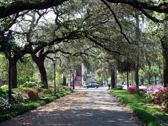 things to do in savannah georgia pc wallpapers 640x480