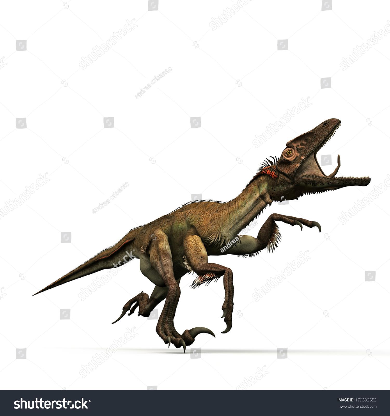 Utahraptor Isolated On White Background Stock Illustration 1500x1600