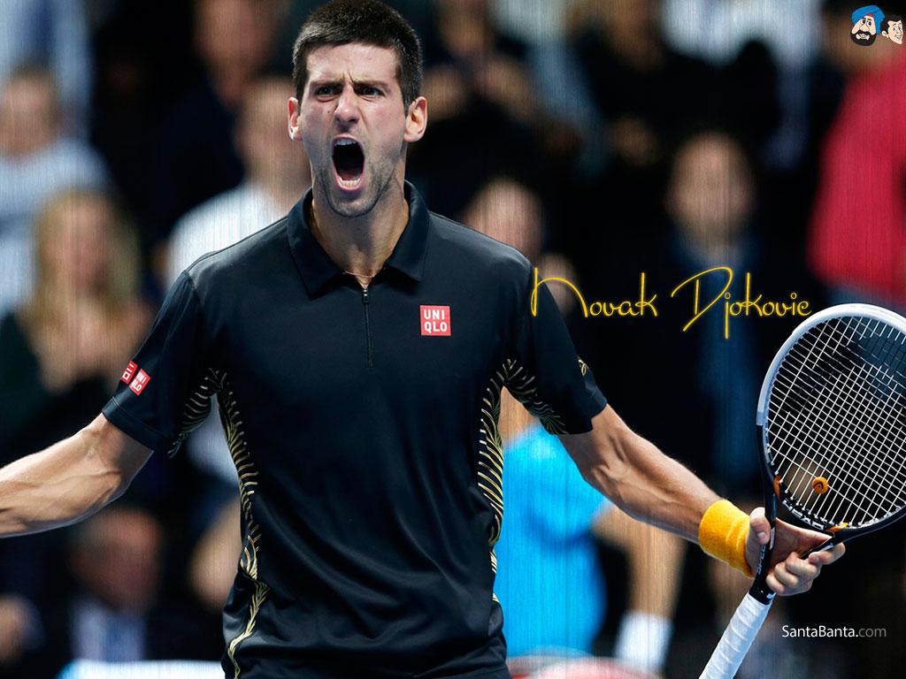 Novak Djokovic Wallpaper 13 1024x768