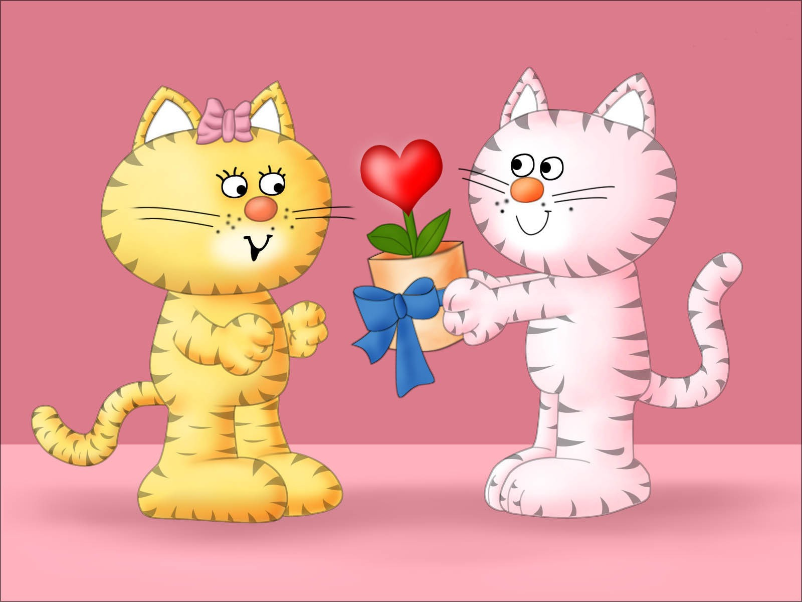 Holidays   Saint Valentines Day Cat love on Valentine s Day February 1600x1200