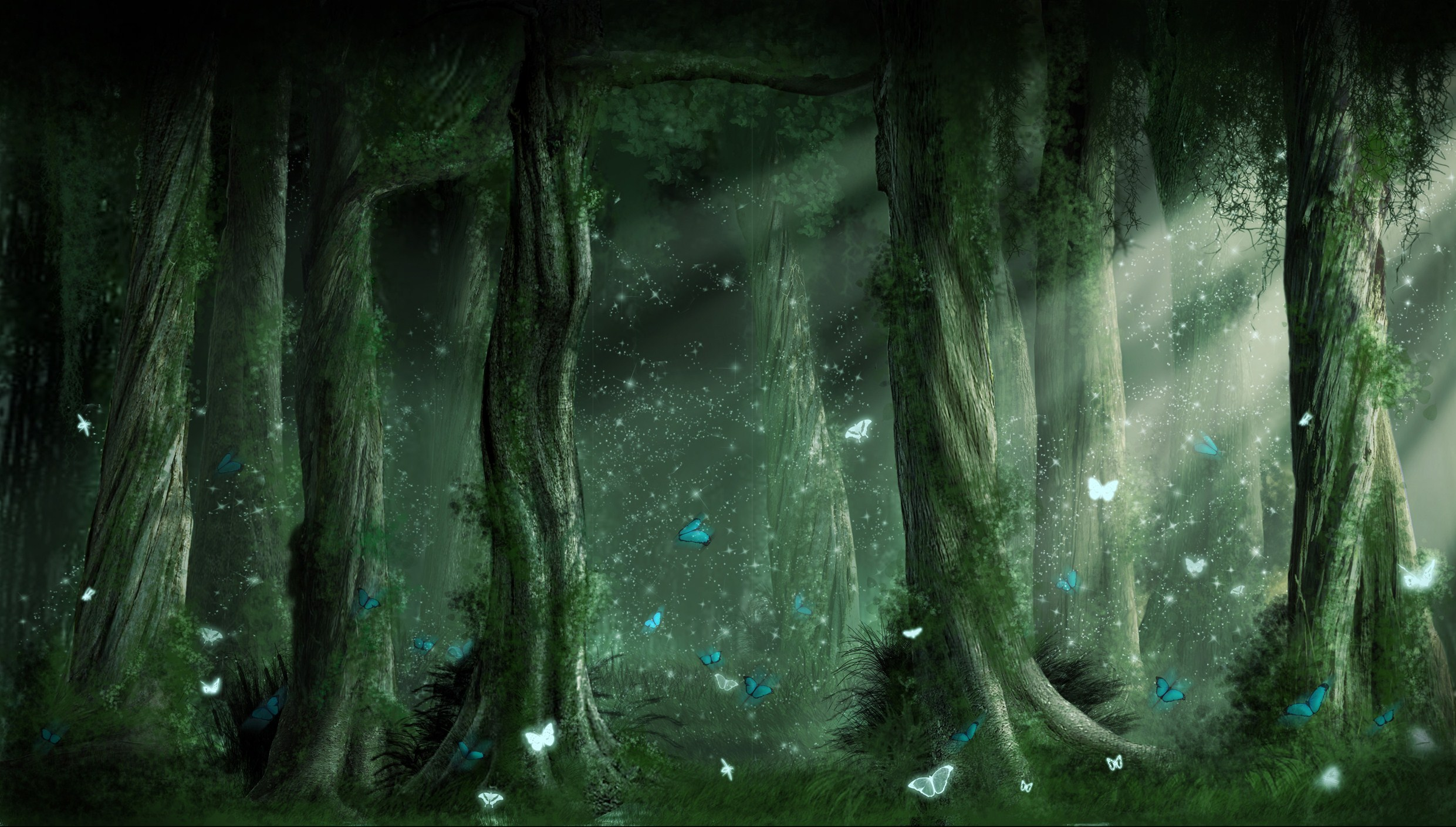 Dark Forest Backgrounds HD wallpaper background 2481x1409