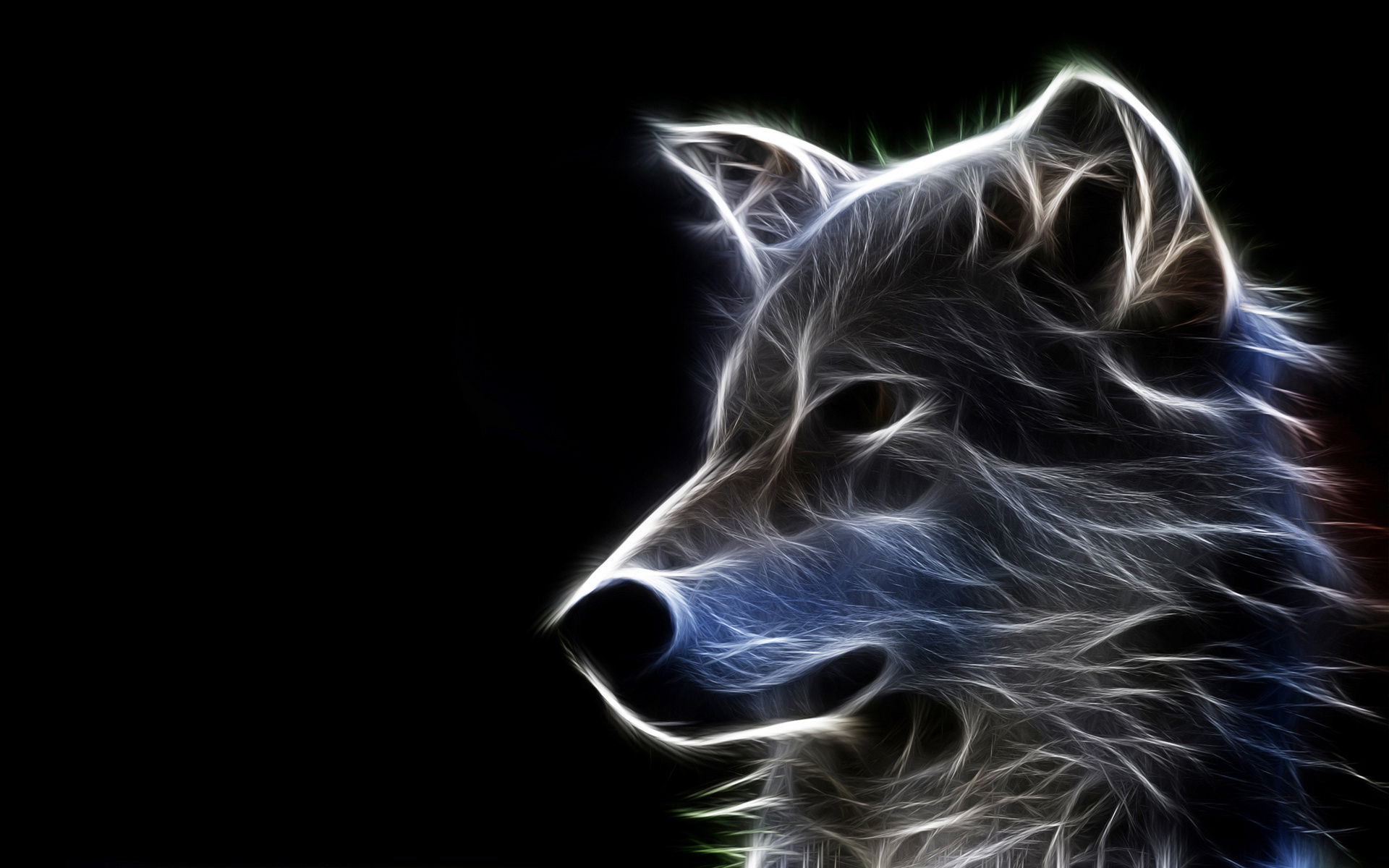 75 ] Wolf Hd Wallpaper On WallpaperSafari