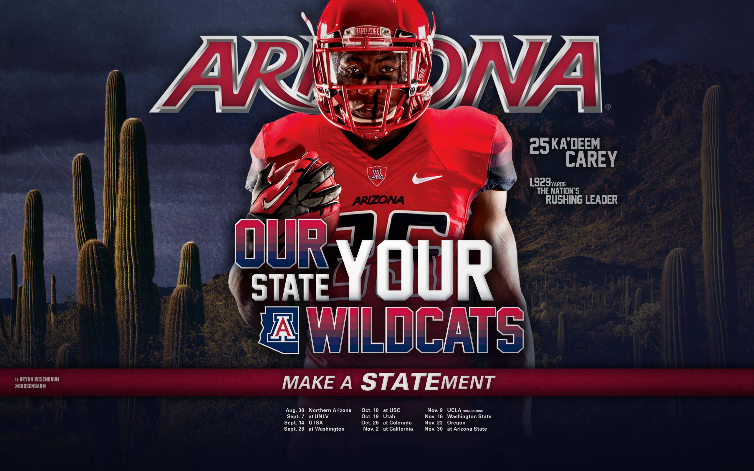 2013 Arizona Football Wallpapers   The University of Arizona 2560x1600