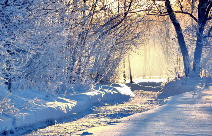 20 Wonderful Winter Wallpaper for Desktop 700x450