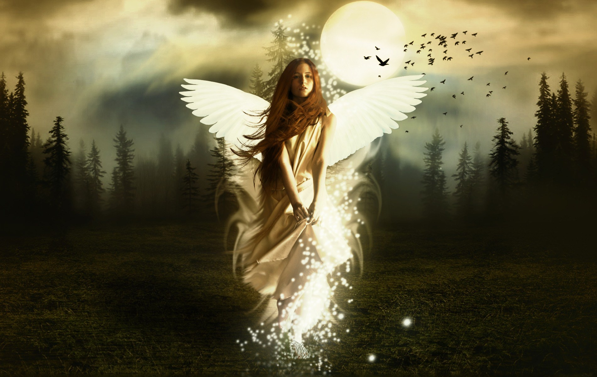 Fantasy Girl Angel HD Wallpapers Pictures HD Wallpapers 1900x1200