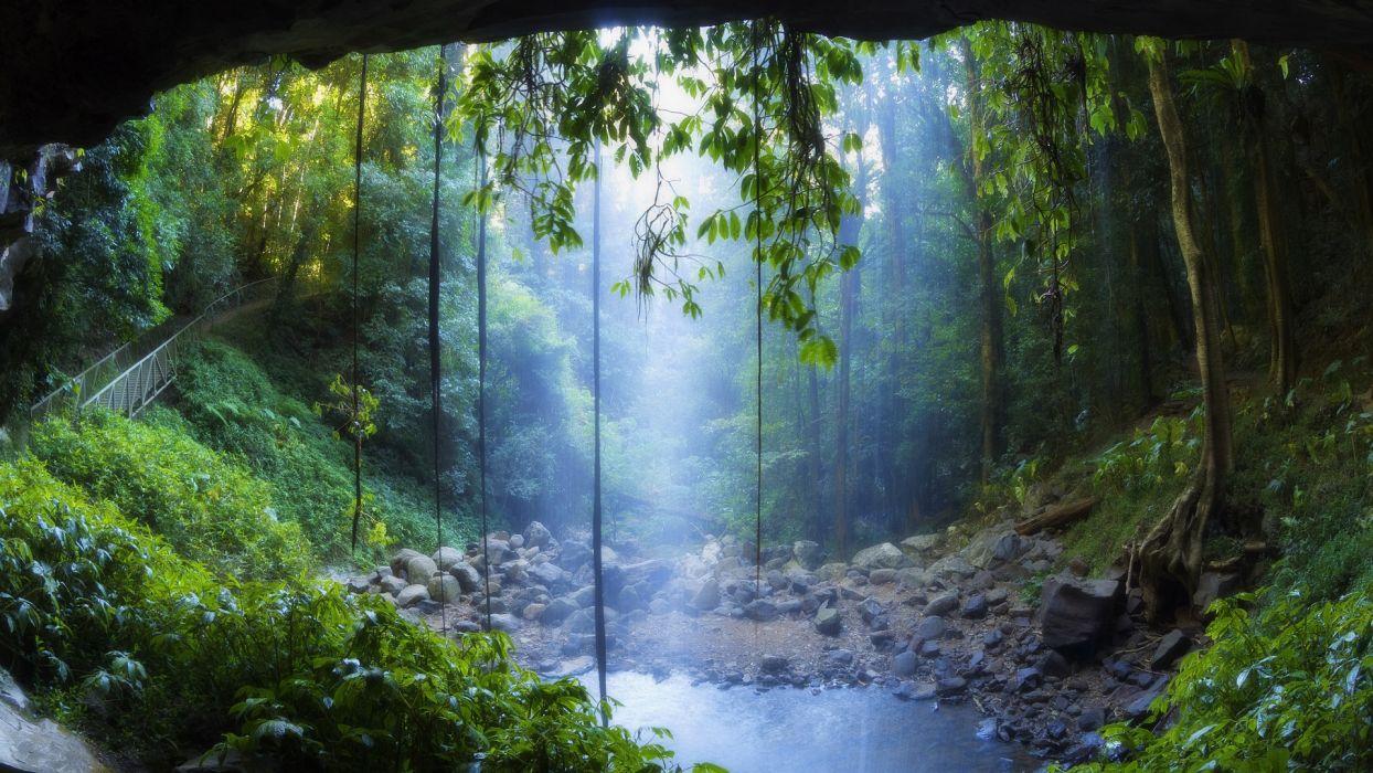 Landscapes rain forest drog fog mist trees woods water pool 1244x700