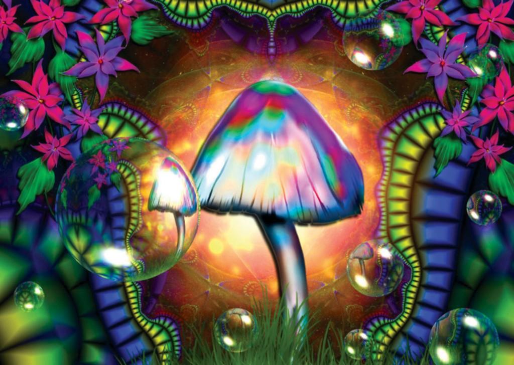 Details about MAGIC MUSHROOMS TRIPPY DIGITAL POSTER ART PRINT AMK481 1024x728