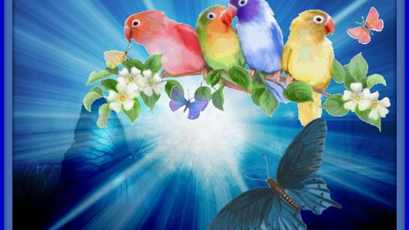 Birds and butterflies - (#111170) - High Quality and Resolution ...