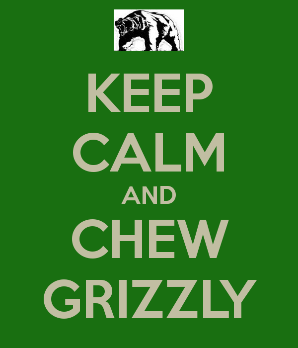 Pin Grizzly Wintergreen Wallpaper 600x700