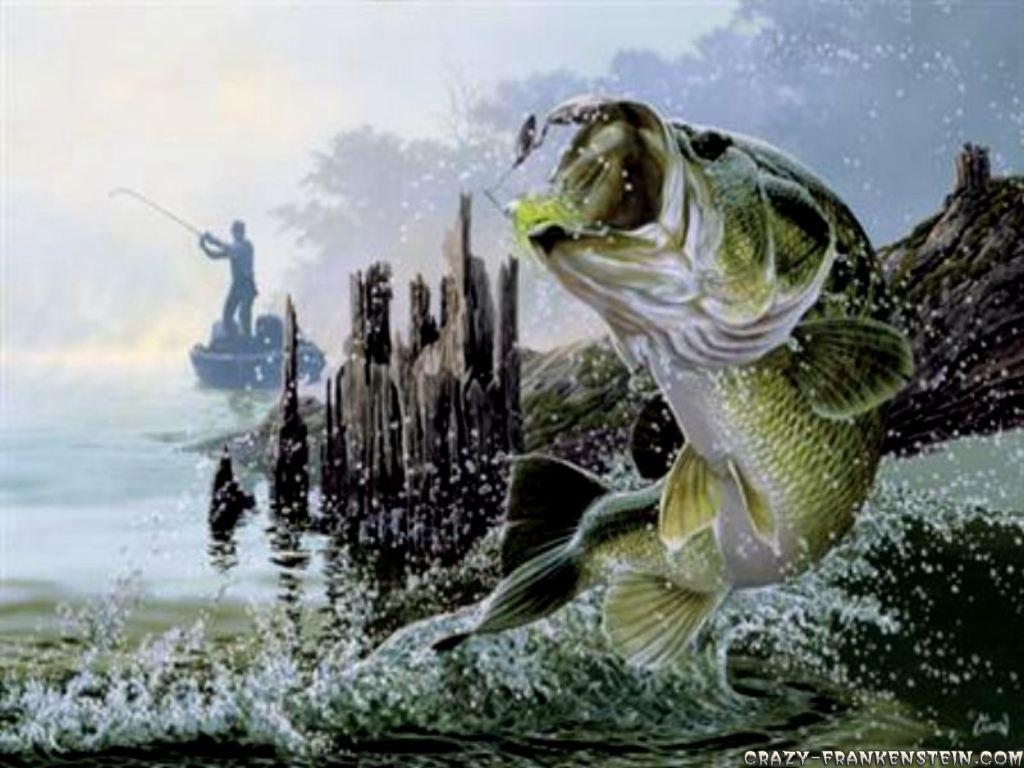 Bass Fishing Wallpaper HD 1024x768