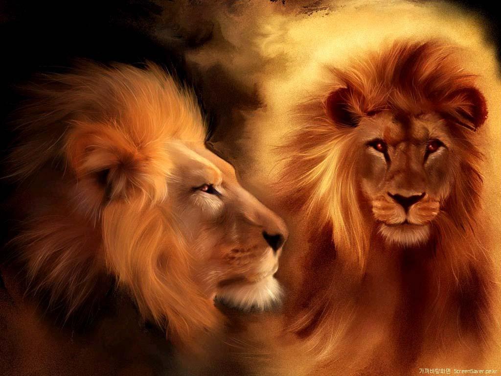 Desktop Wallpapers Backgrounds Tiger Wallpapers Lion 1024x768