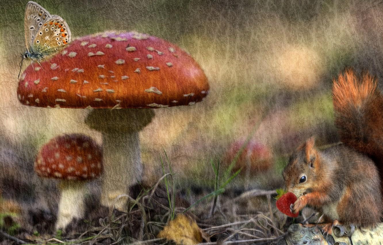 Wallpaper autumn forest rendering butterfly mushrooms 1332x850