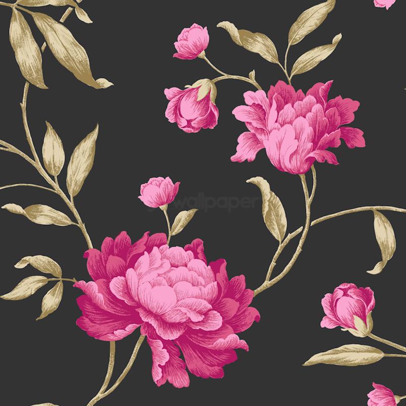 Wallpaper Black Pink: Black And Pink Flower Wallpaper