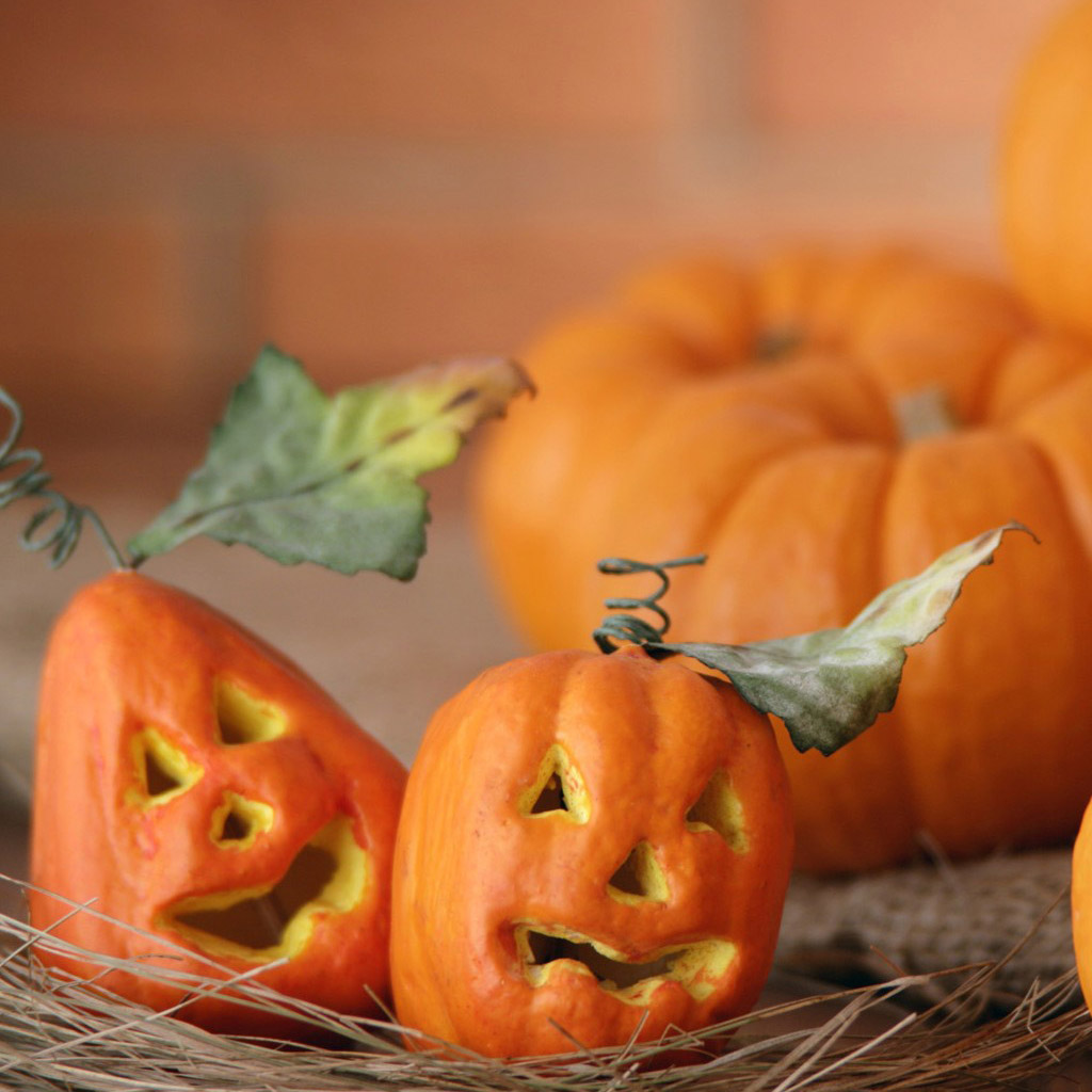 Go Back Images For Cute Halloween Wallpaper 1024x1024