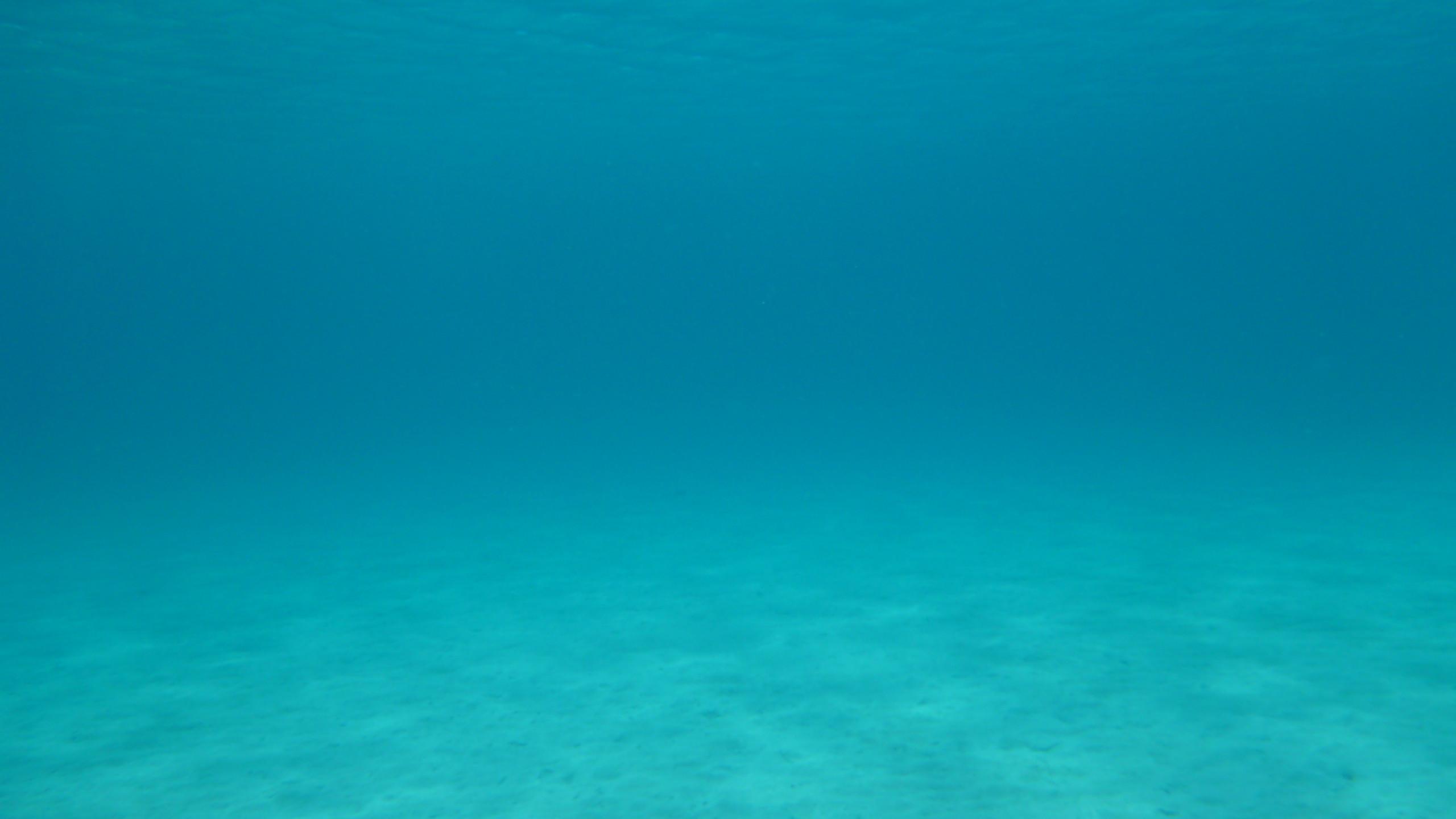 BOTPOST] Beautiful clear blue water in the Caribbean iimgurcom 2560x1440