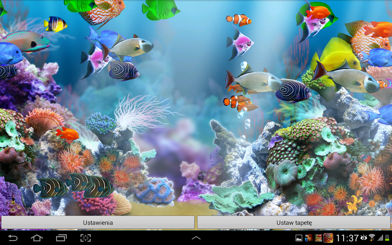 aquarium live wallpaper is an amazing quality active wallpaper now you 1280x800