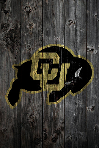 colorado buffaloes desktop