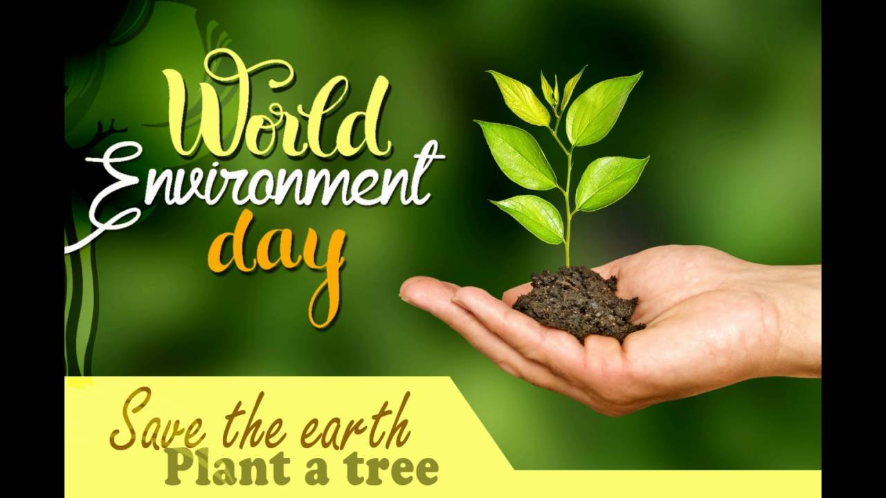 World Environment Day 2019 Wishes SMS images wallpapers to 1280x720