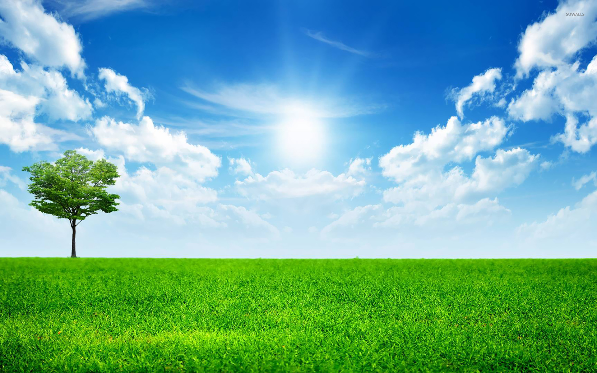 Sunny blue sky wallpaper - Nature wallpapers - #14782