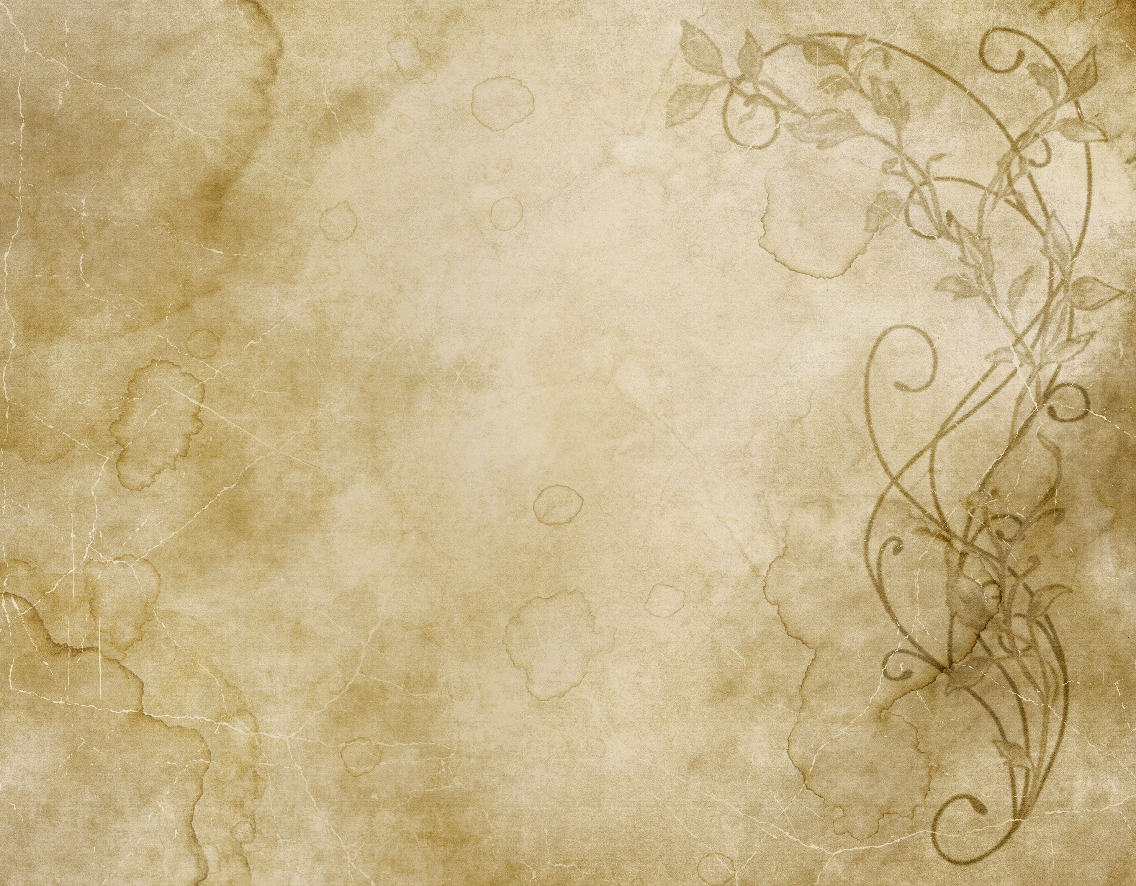 Excellent faded and worn floral design on old paper or parchment 3850x3002