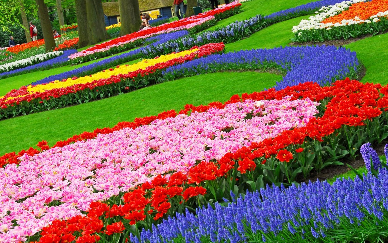 Free flower garden desktop wallpaper wallpapersafari for Flowers landscape gardening