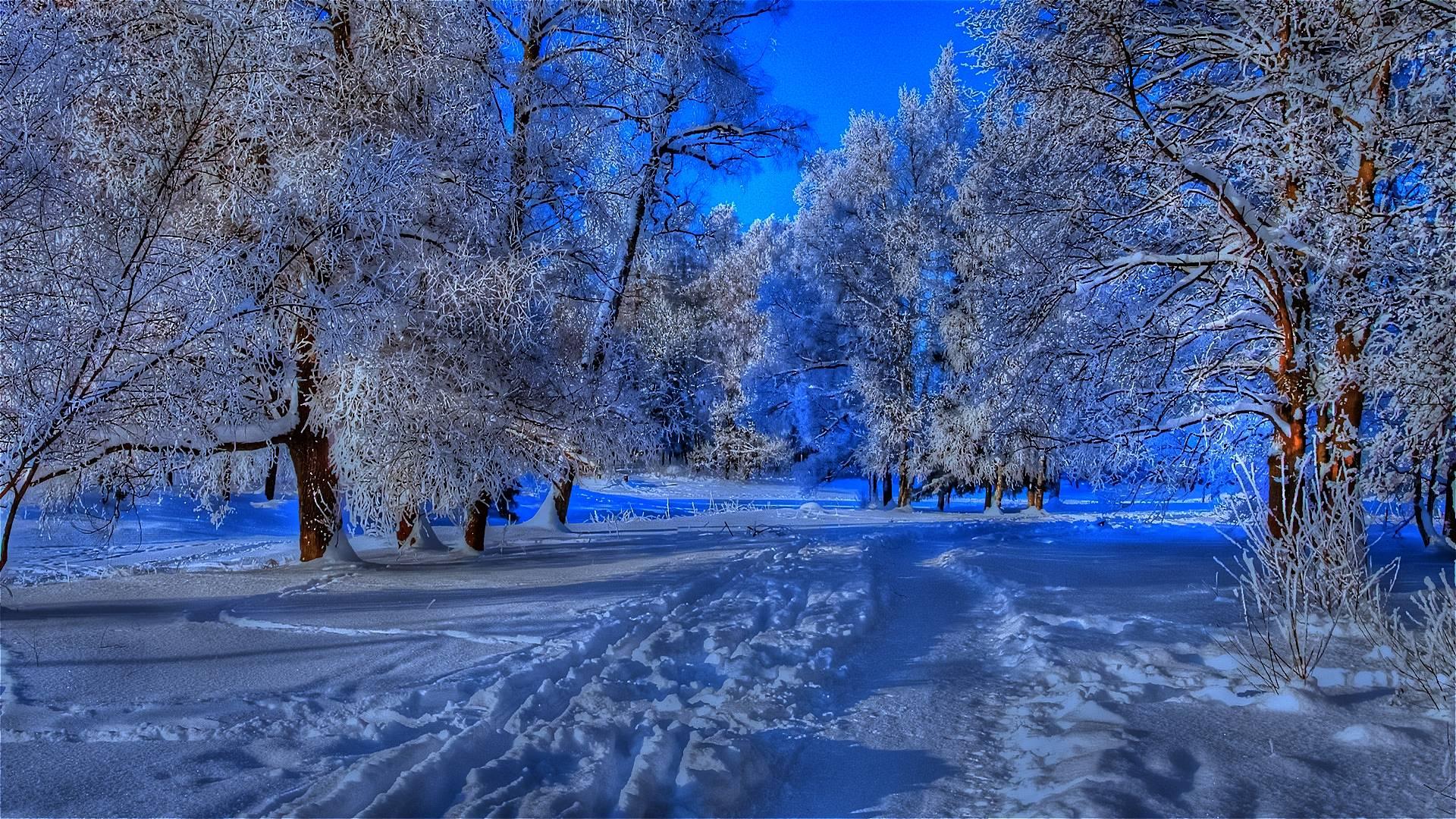Beautiful Winter Backgrounds 1920x1080