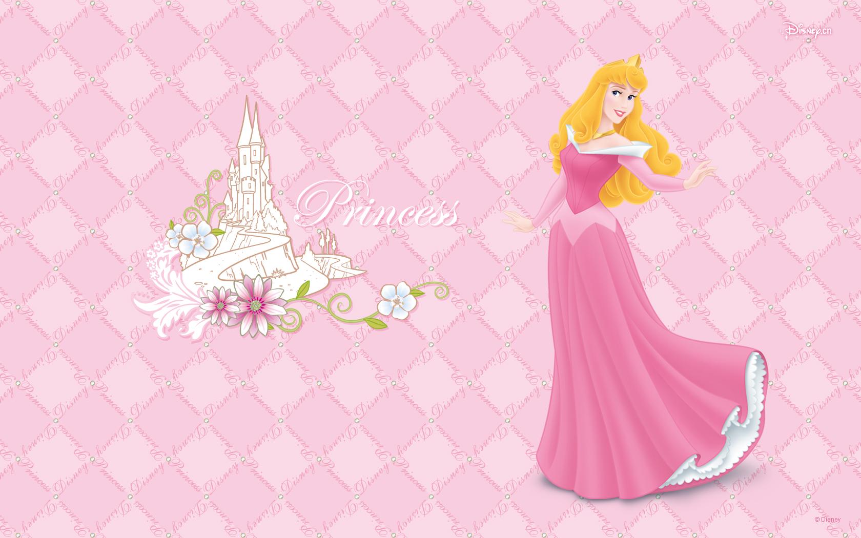 Princess Wallpaper Background HD 10102 Wallpaper Cool Walldiskpaper 1680x1050