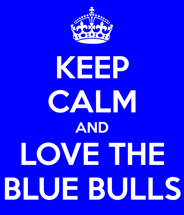 Blue Bulls Wallpaper Images Pictures   Becuo 600x700