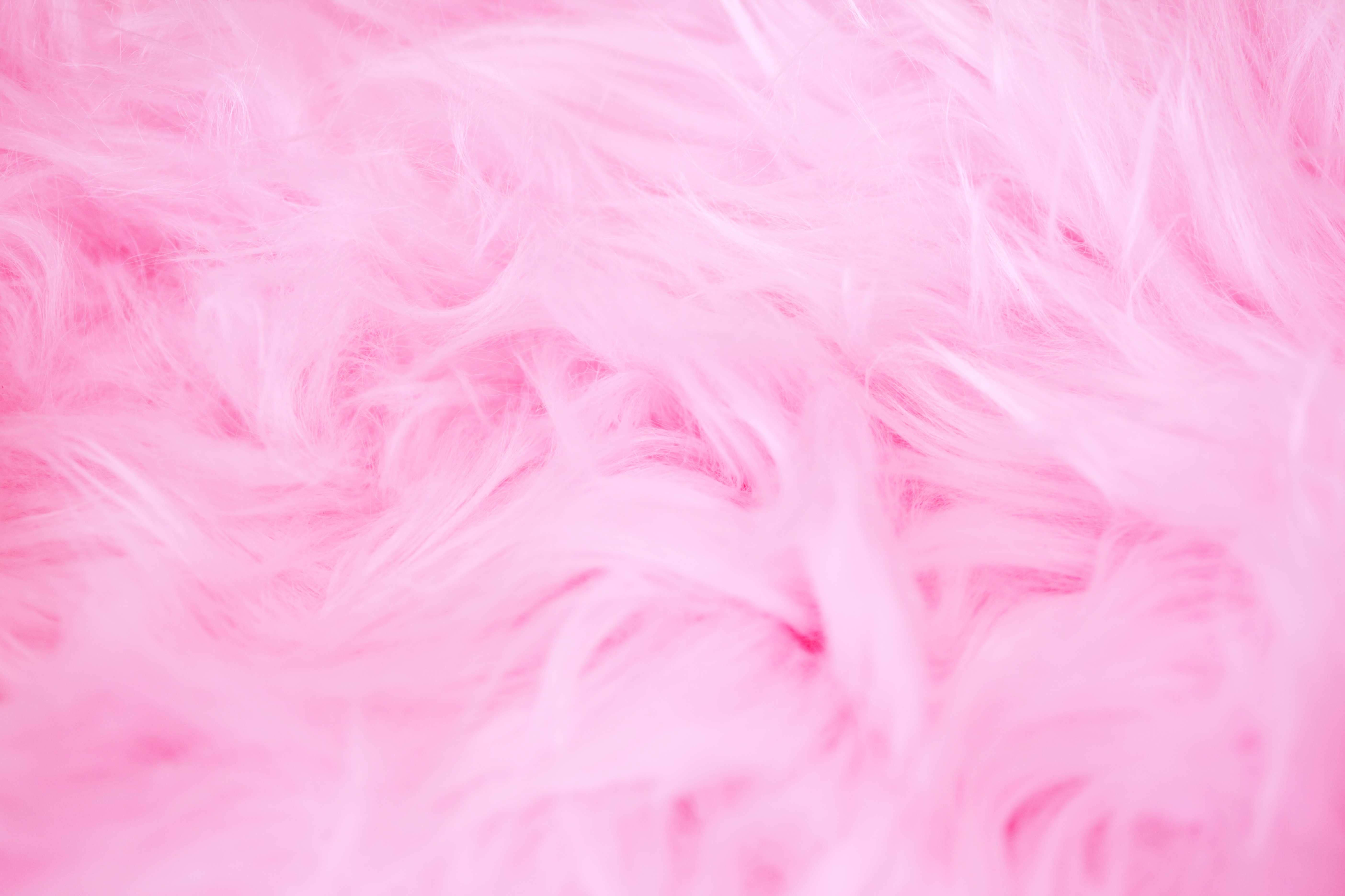 Girly Wallpapers HD Download [500 HQ] Unsplash 5616x3744