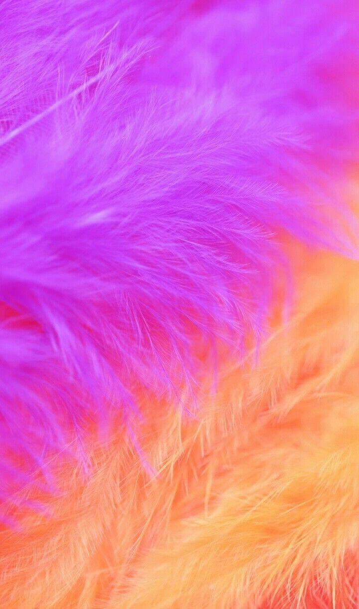 31666003 Pastel rainbow colored background Unicorns in 2019 720x1222