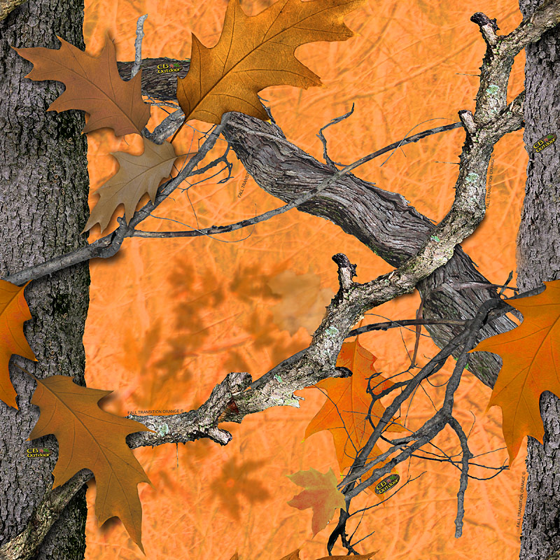 Outdoor Fall Transition Camo Camouflage Licensing Graphics Design 800x800