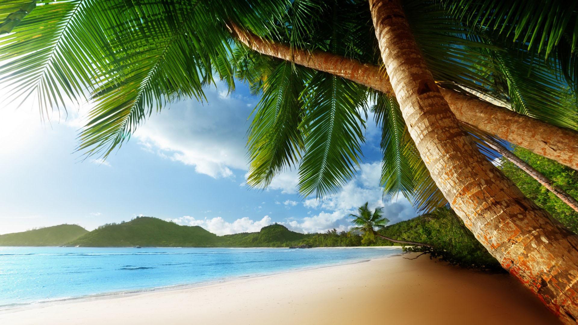 paradise island wallpaper 2920jpg 1920x1080