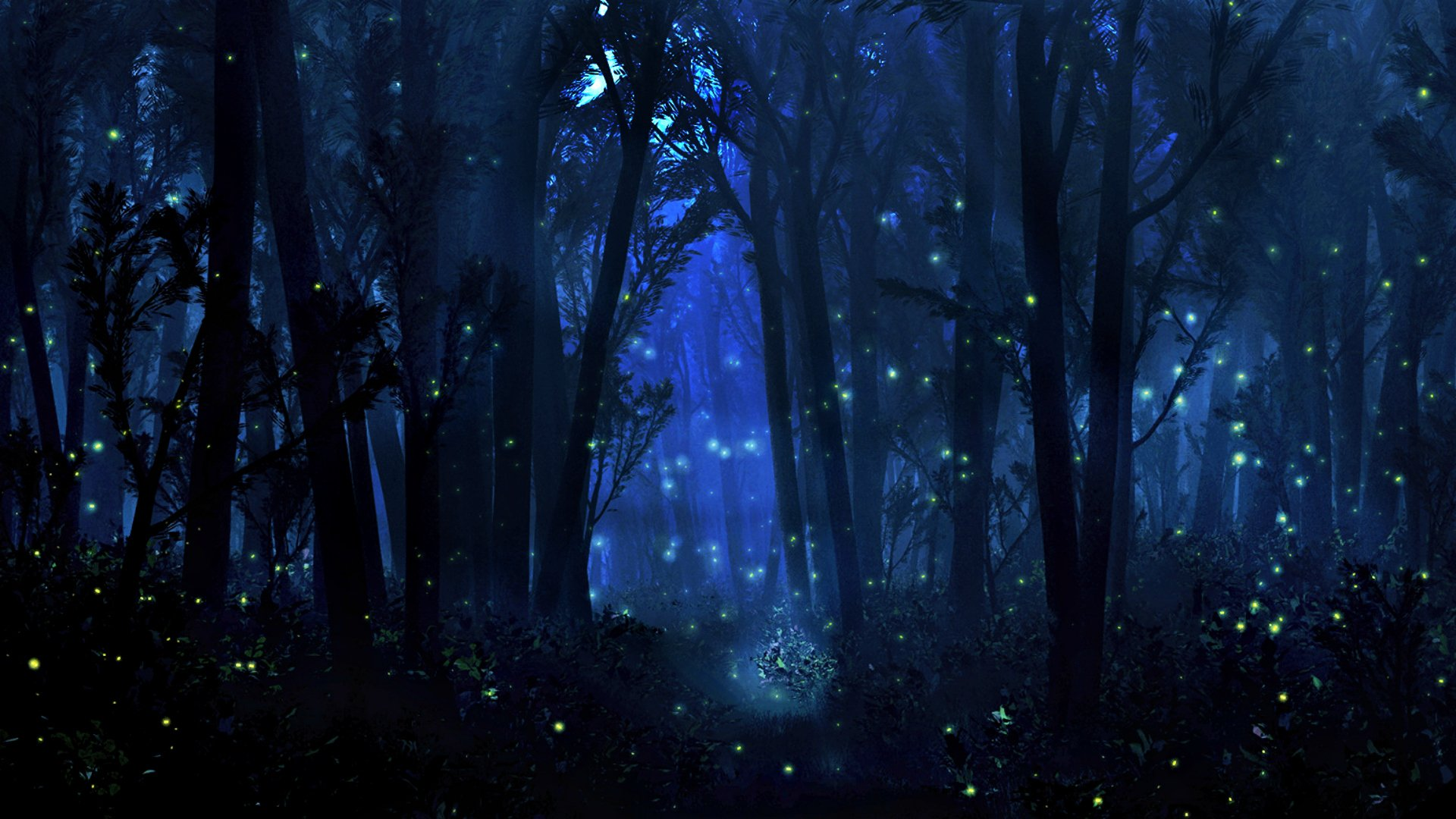 Mystical Forest Wallpaper - WallpaperSafari