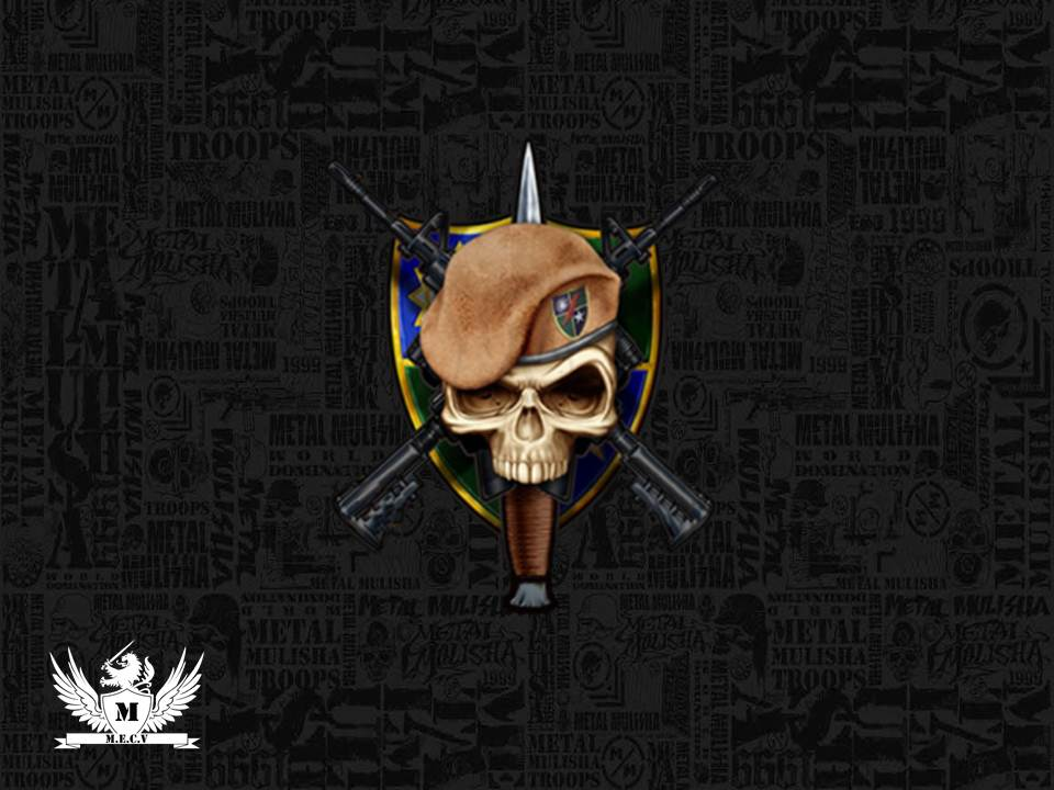 Us Army Rangers Logo Wallpaper Army ranger logo by miguelf22 960x720