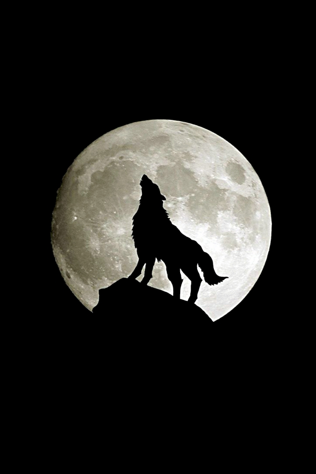 Free Download Abstract Wallpaper Wolf Full Moon With Size