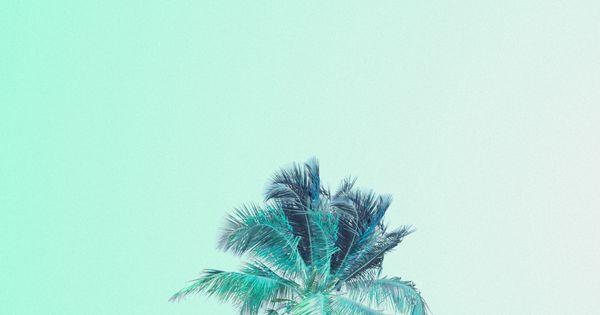 Mint Green iPhone Wallpaper - WallpaperSafari