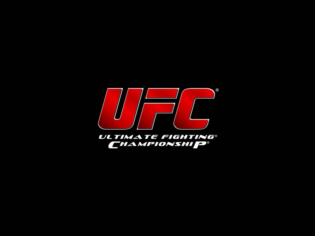 UFC Wallpapers 1024x768