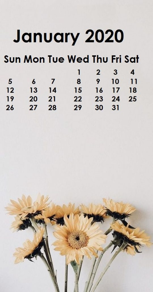 Monthly 2020 iPhone Calendar Wallpaper 539x1024