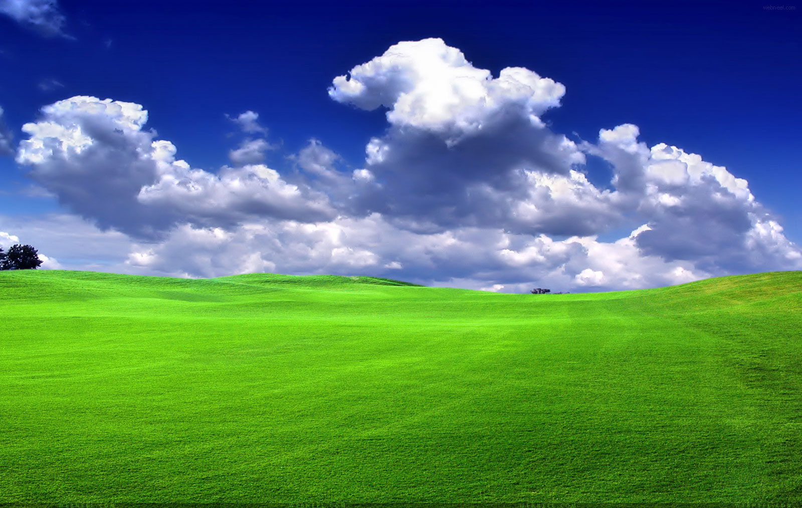 50 Beautiful Nature Wallpapers for your Desktop Mobile and Tablet   HD 1600x1014