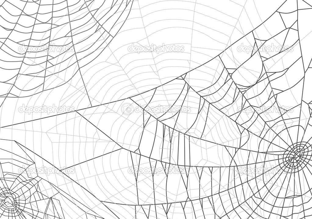 Spider Web Background Illustration With Spider Web 1023x717