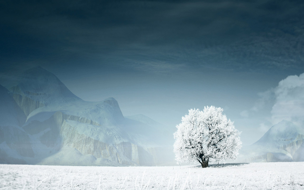 43 Beautiful Winter Wallpapers   Wallpapers for dekstop 1280x800