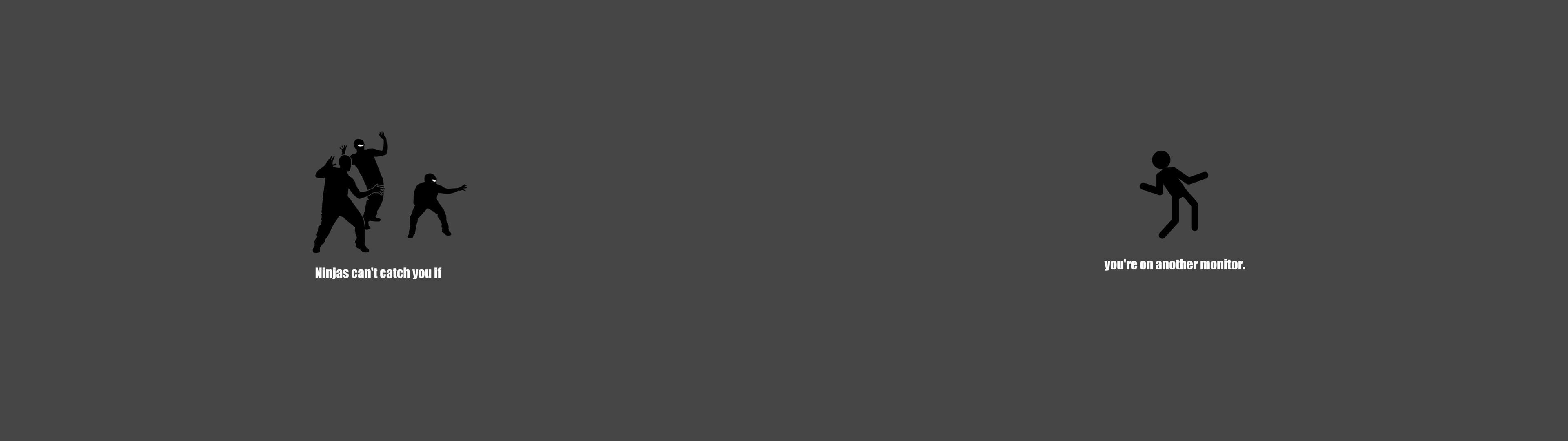 Download Ninja 3840 x 1080 3200 x 1080 2560 x 1024 3840x1080