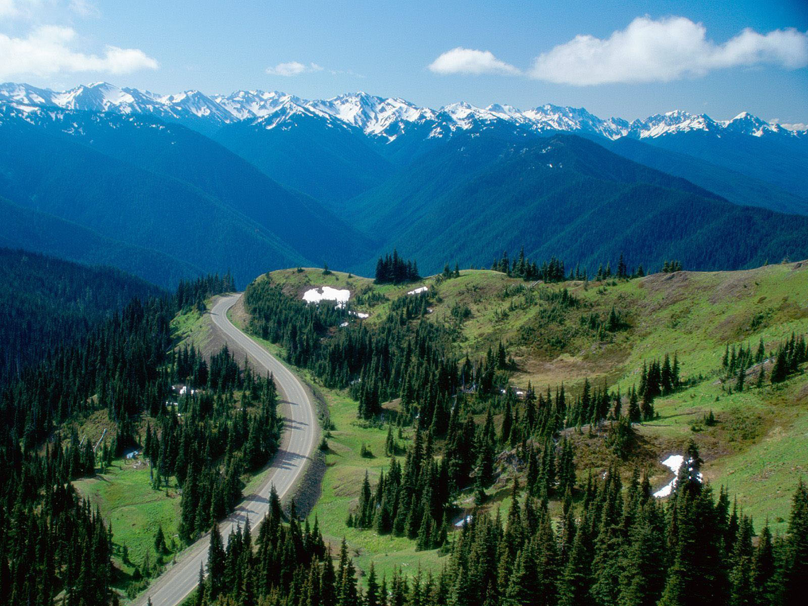 Tag Olympic National Park Wallpapers Backgrounds PhotosImages and 1600x1200
