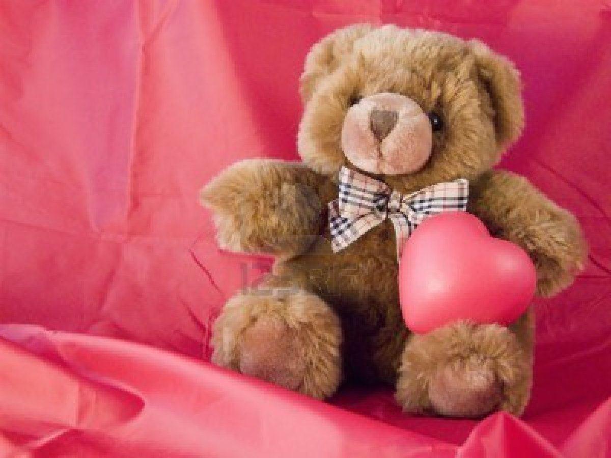 cute teddy bear pics 1200x900