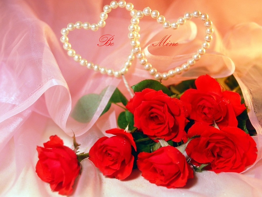 Free Download Digalericom 10 Wallpaper Bunga Cantik Gambar Bunga