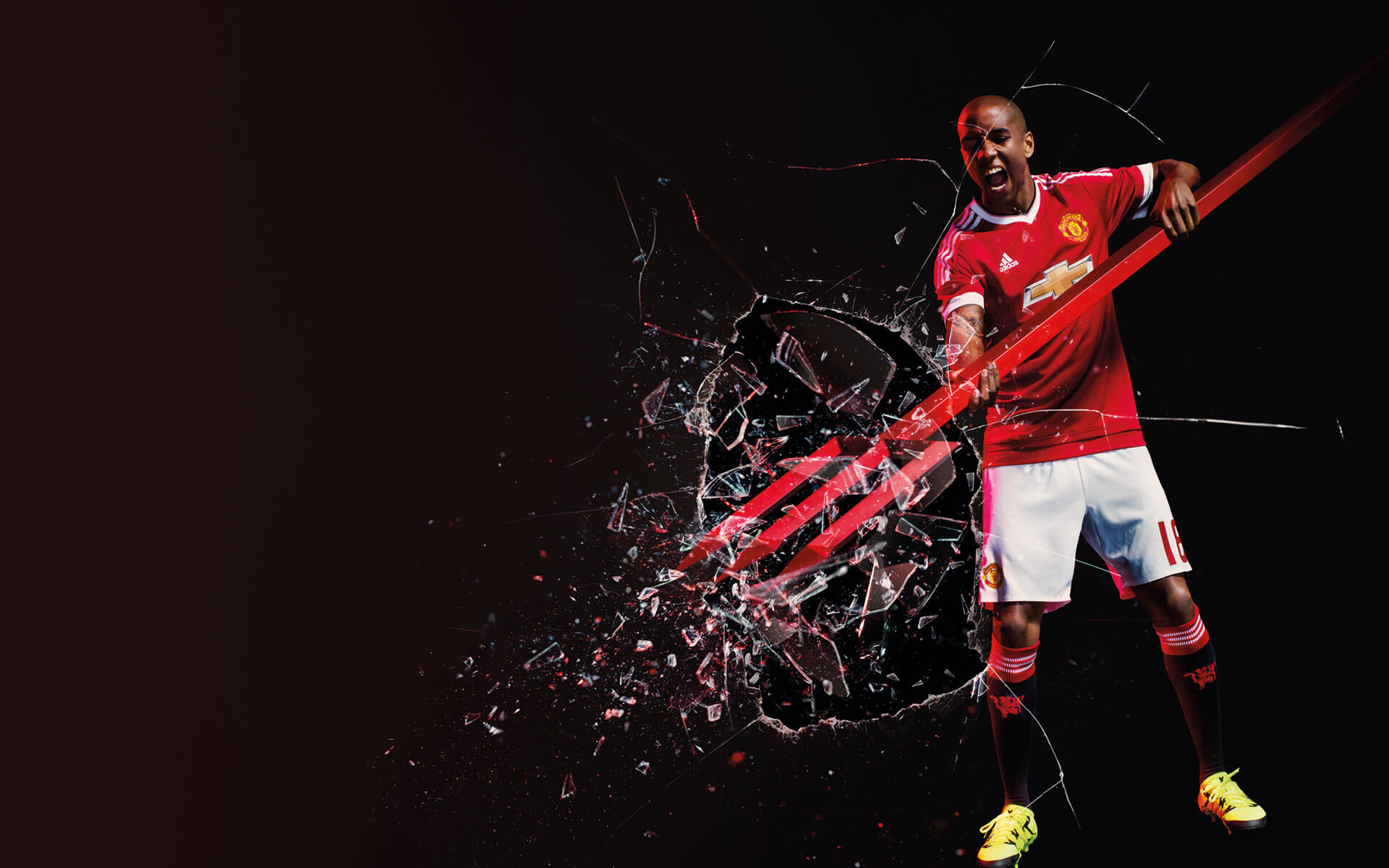 Ashley Young 2015 2016 Manchester United Adidas Home Kit Wallpapers 1920x1200